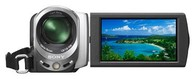Цифровая видеокамера Flash Sony Handycam DCR-SX43 Silver